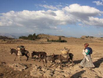 Kerst rondreis in Ethiopië