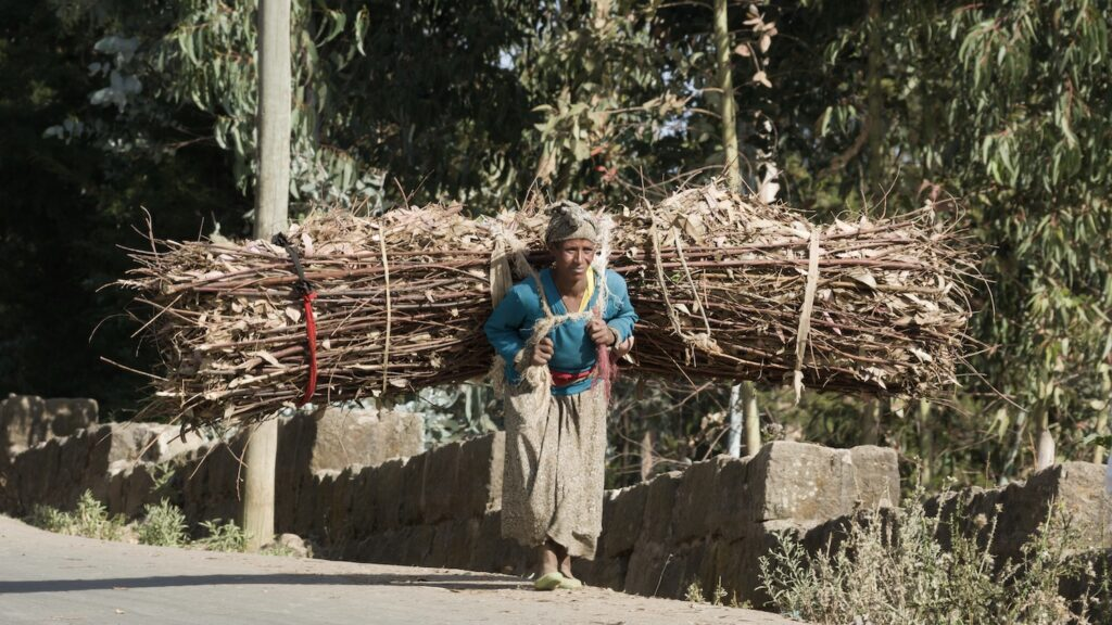 Dag 2: Ontmoet de lokale vrouwen op de Entoto heuvel