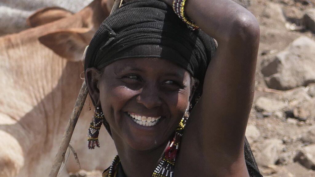 50 plus reizen en ontmoet de Afar nomaden met hun kuddes