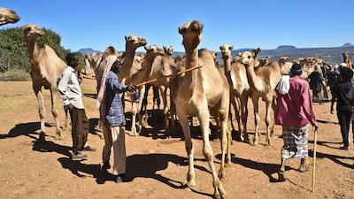 De stammen in zuid Ethiopië